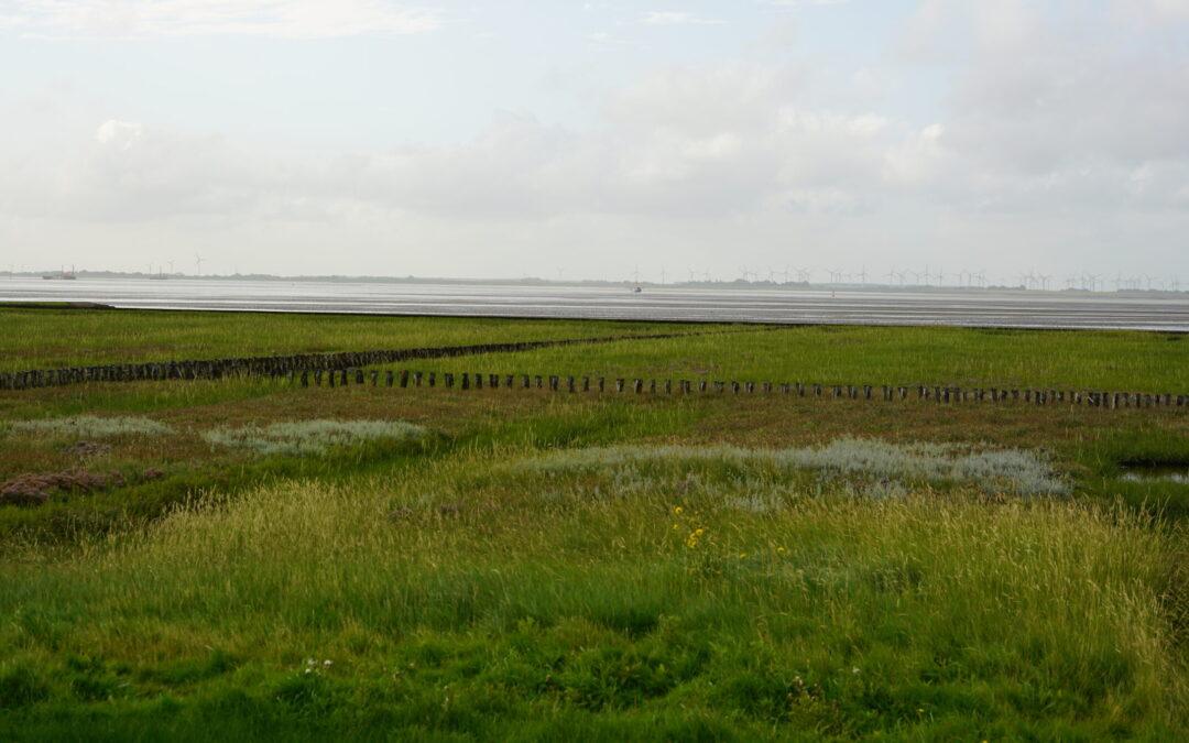 Need to map UXO across km-wide tidal flats or shallow coastal areas?